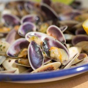 Mediterranean Coquina Clams with pasta