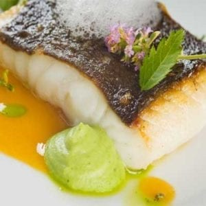 Turbot loin with puree and garlic sauce