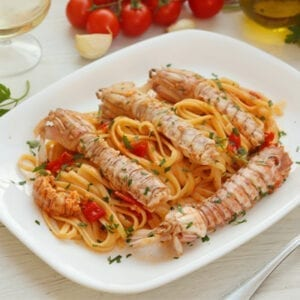 Mediterranean Galera Shrimp mantis shrimp from the Mediterranean with linguine and italian sauce on a plate