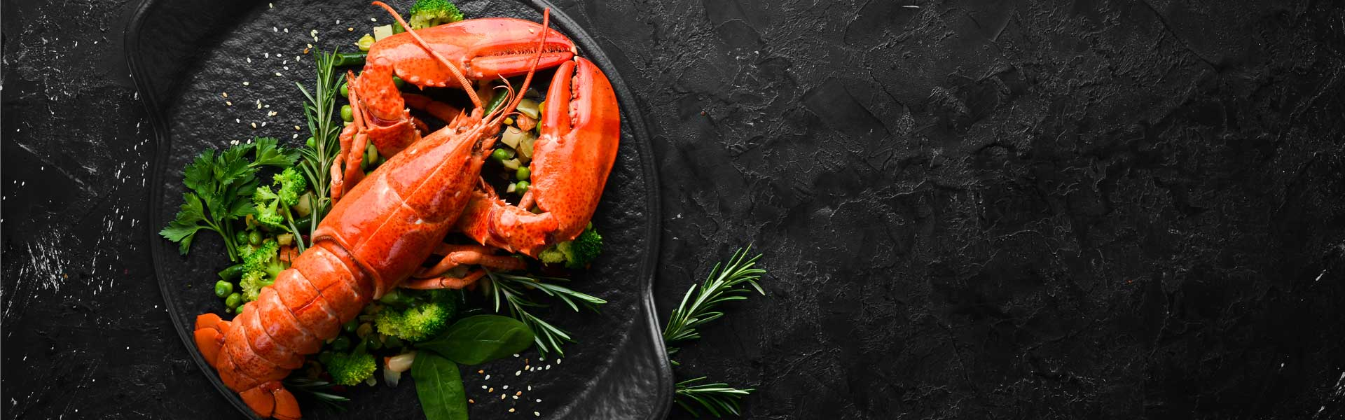 Cooked lobster, no difference between blue lobster and maine lobster